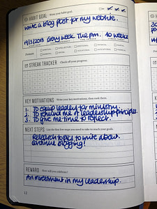 full focus planner - habit goal